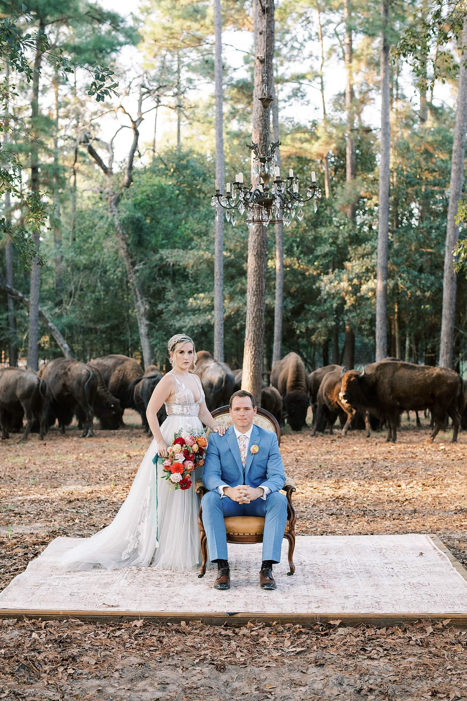Couple poses dramatically under chandelier with buffalo walking behind them at The Annex wedding venue